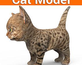 game-ready 3D Tamed Cute Cat