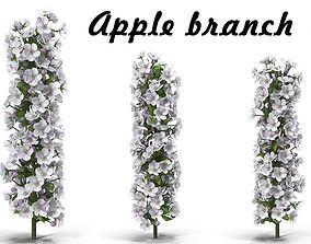 Apple branch 1 3D model
