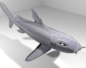 3D model Shark - Bullshark