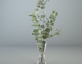 Eucalyptus in a glass vase 3D model