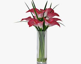 Calla lily 05 3D model