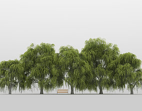 tree 3D model Willow Tree Pack 01
