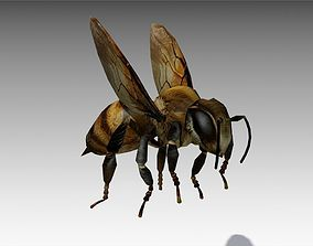 3D model Honey Bee Animated