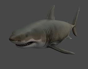 3D asset realtime Great White Shark