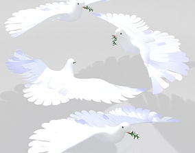 Dove Pigeon 3D model