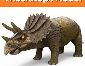 Realistic Triceratops Rigged 3D Model rigged