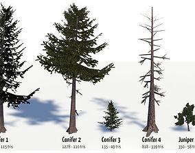 3D model Conifer Trees
