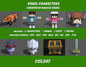 Character Voxel Pack 3D asset