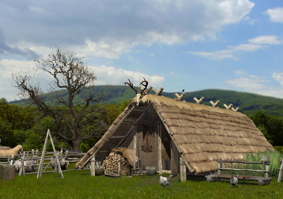 Celtic hut