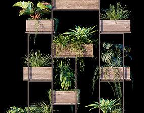 3D model Plant set 11