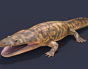 3D model Metoposaurus