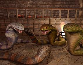 Cobra Snake Pack PBR 3D model