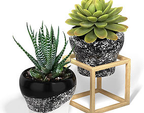 planter Flower Pot with a Wood Cube Frame 3D