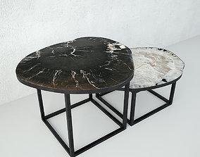 3D model Petrified Wood Slice Coffee Tables 5