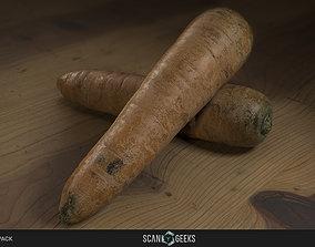 game-ready Carrot - Photogrammetry Asset 3D PhotoScan 3D