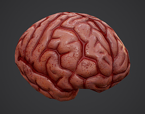 Human Brain 3D model low-poly