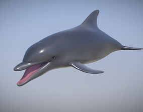 Dolphin 3D model realtime