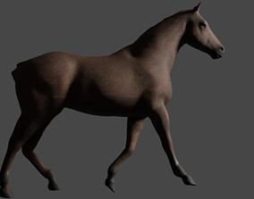 texture 3D model horse