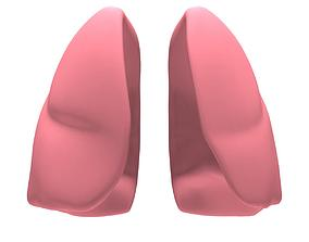 3D model Lungs MAX 2008