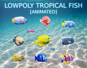 Tropical Fish Collection 3D model