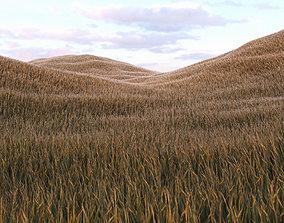 3D asset Grass Low Poly 5