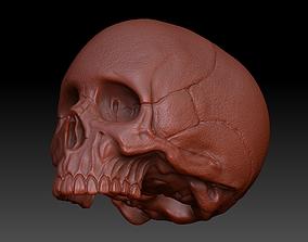 Skull Human 3D body
