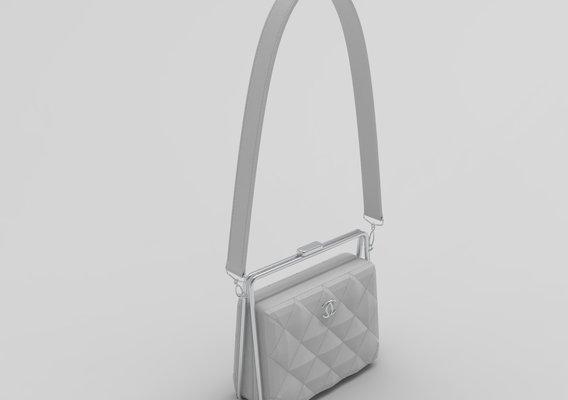 Chanel Clutch metal frame