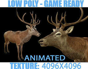 3D model Deer animated