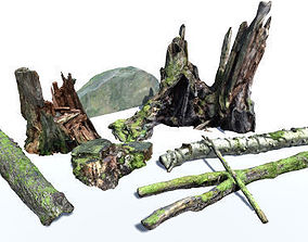Trunks and Stumps Vol 3 and Rock 3D asset