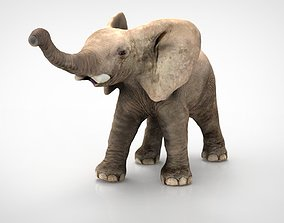 animals ELEPHANT 3D model low-poly