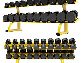 3D model Signature Series Two Tier Dumbbell Rack