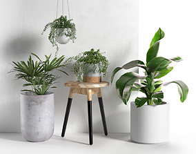 Stool and Pots with Plants scandinavian 3D