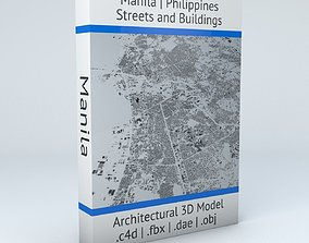 3D Manila Streets and Buildings