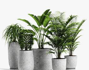 3D plants set 04