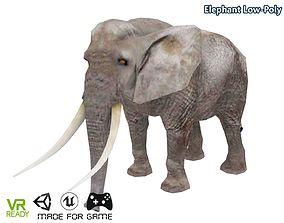 Elephant Low Poly 3D asset
