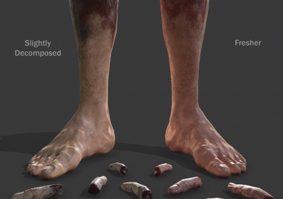 Fake Severed Foot and Fingers