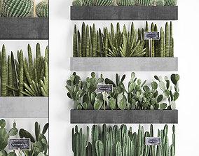 Cactus set wall decor vertical garden 43 3D