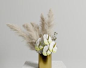 Anthuriums Pampas set 3D model