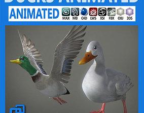 Animated Ducks 3D model