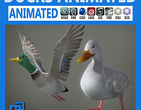 Animated Ducks 3D model