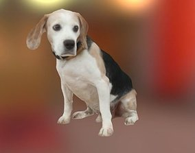 miniatures Beagle Dog 3D model