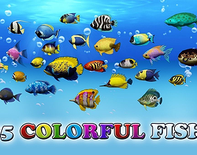 3D model Colorful Sea Fish