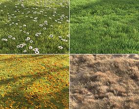 Four seasons grass 3D winter