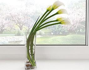 Calla lily 03 3D model