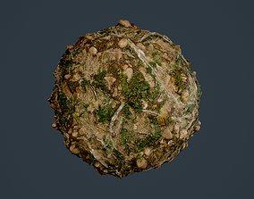 Forest Ground Seamless PBR Texture 06 3D model
