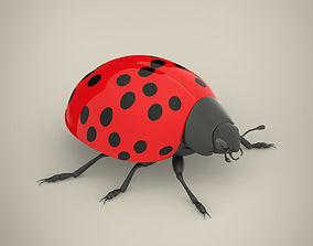 3D model ladybug Ladybird