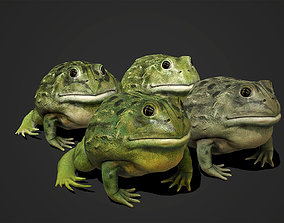 Pixie Frog - Game Ready 3D model