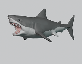 Great White Shark 3D print model marine