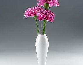 pot 3D Ornamental plant 15 Dianthus carnation