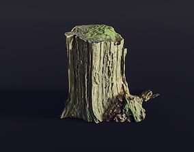 3D model tree stump big old mossy 1 - Photoscanned